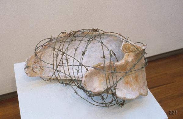 Shellybone