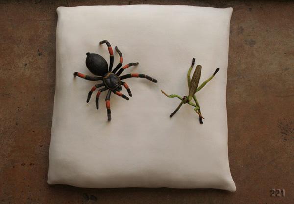 Tabatha spiders